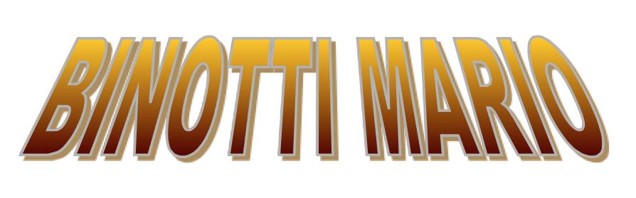 Logo Binotti Mario